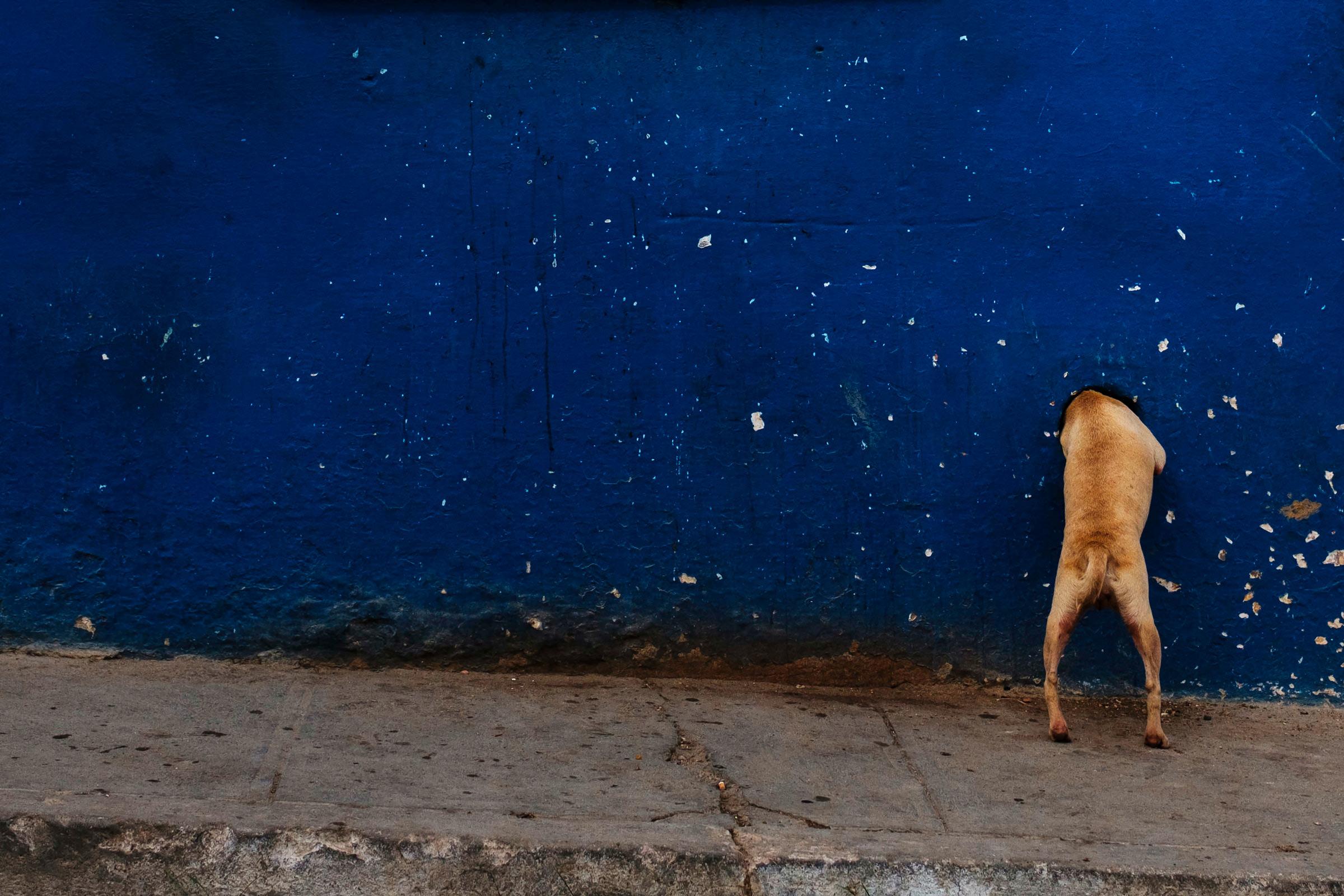 Cuba-Street-Photography-18