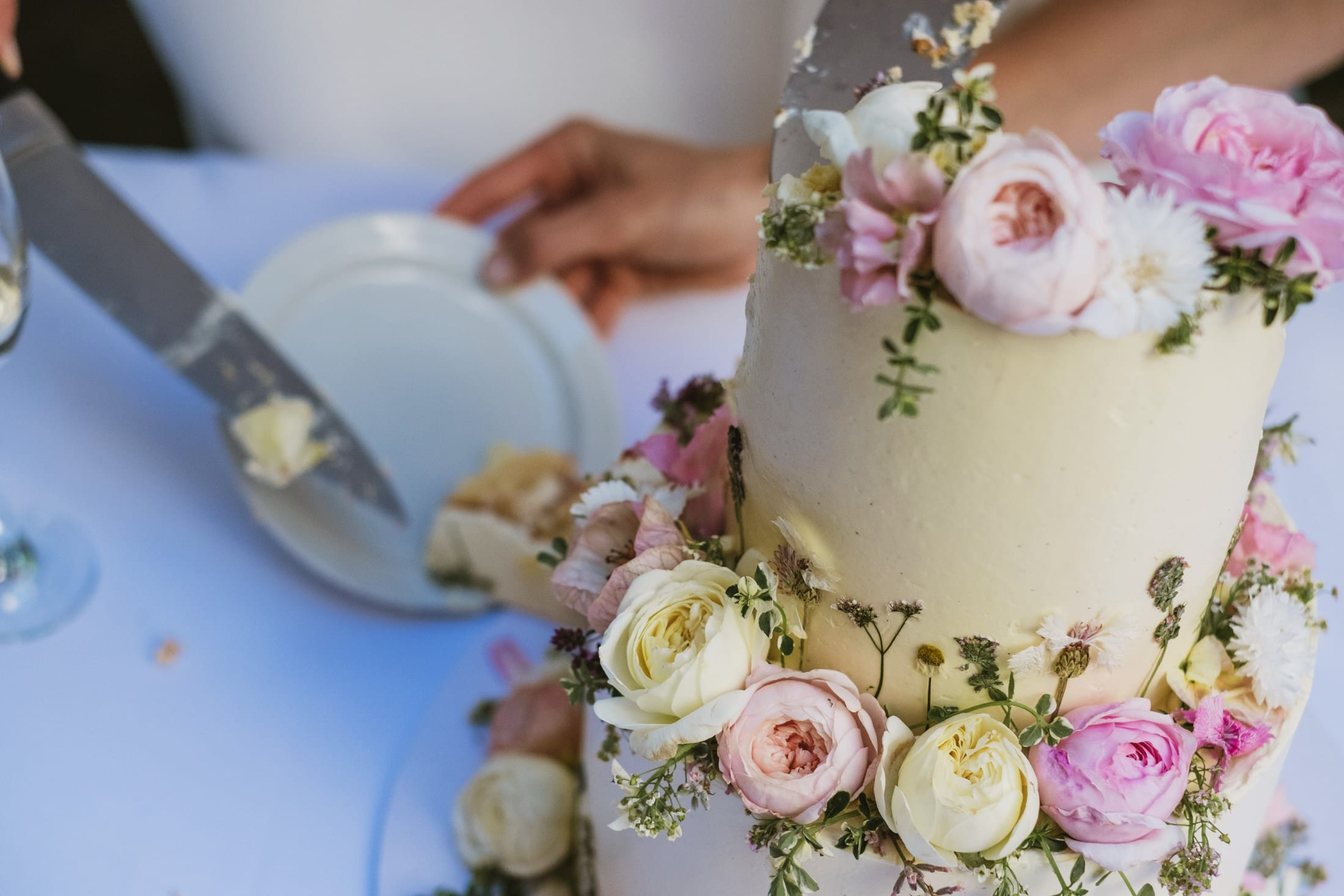 Documentary style photograph of a wedding cake as it is being sliced up and served to guests at a London micro wedding