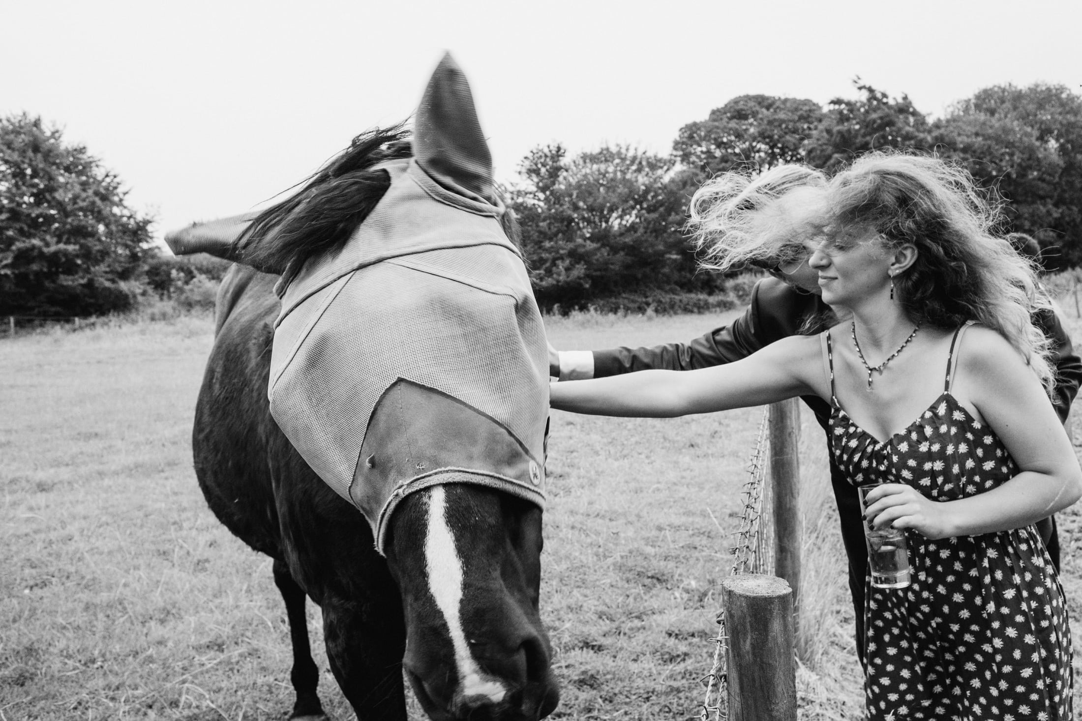 guests patting horse at wedding reception